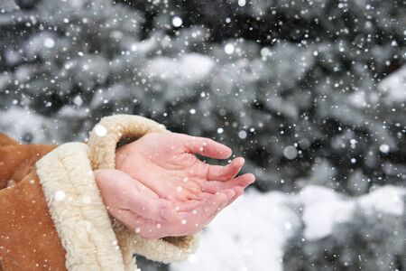 human palm: Snow falls on womens hands, winter season concept