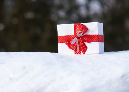 red gift box: Gift box with red bow on snow in winter forest. One object. Christmas holiday concept. Stock Photo