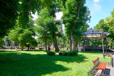 summer city park with peoples, bright sunny day, trees with shadows and green grass Stock Photo
