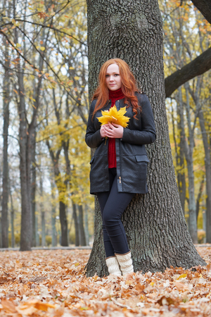 young woman stand near tree in autumn park, yellow leaves