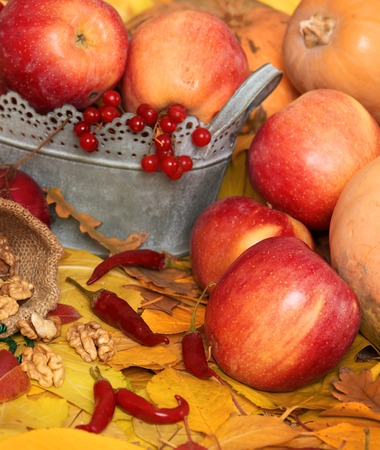 autumn harvest - fruits and vegetables are on fallen yellow leaves, nuts, apples, pumpkins, rowan and pepper. Perfect background for autumn season.