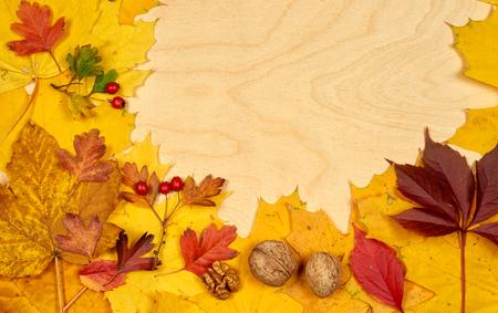Autumn leaves on wood background