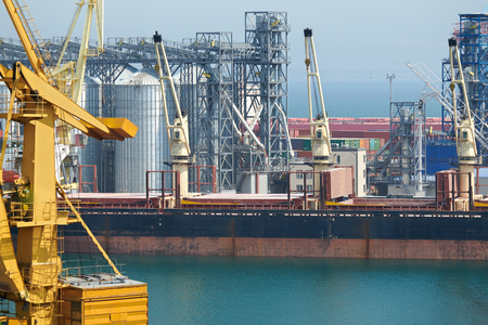 Industrial port, infrastructure of seaport, cranes and dry cargo ships