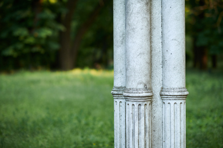 old white column in park, retro architecture, trees and leaves