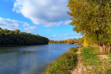 autumn landscape, bright colorful forest at sunny day, trees near river and blue sky Foto de archivo