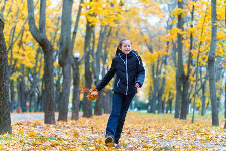 a girl posing near wooden fence and enjoys autumn in city park, beautiful nature with yellow leaves
