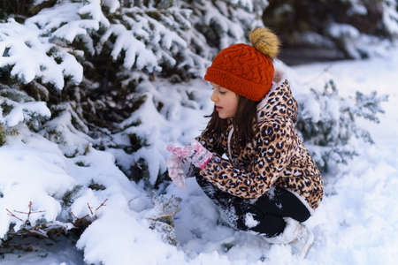 child girl sitting on a sled and tasting the snow in a winter forest, bright snowy fir trees, beautiful nature.