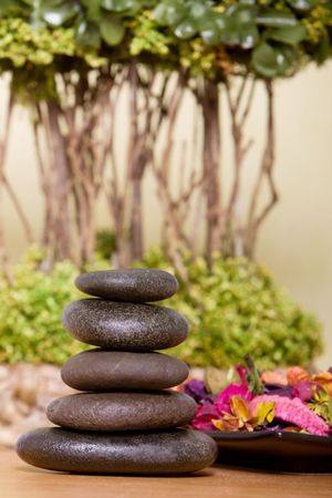 lastone therapy: Lastone therapy rocks