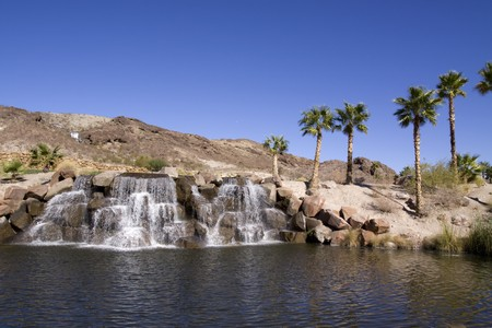 Beautiful oasis in the desert Stock Photo - 6958501