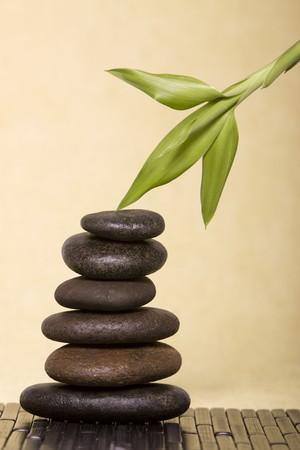 balanced rocks: Fresh bamboo over balanced rocks