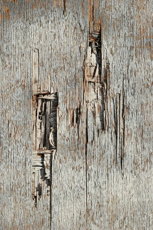Old wood Stok Fotoğraf