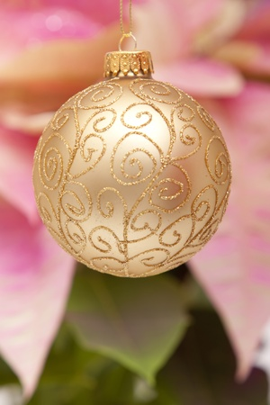 Christmas ornament with poinsettia background