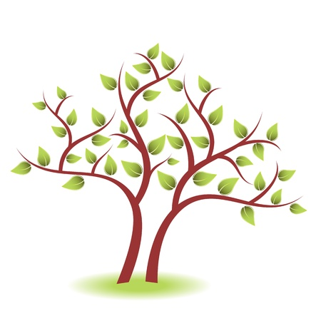 Tree with green leaves on white background 向量圖像