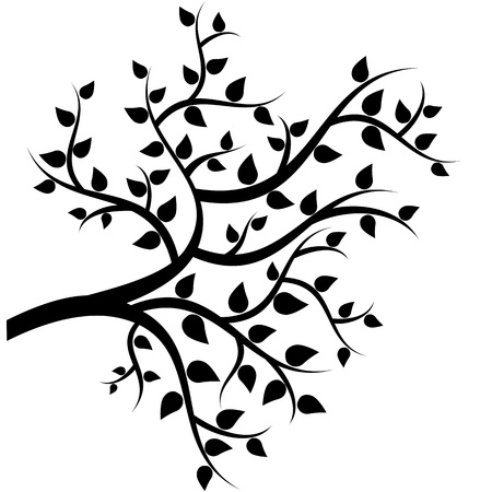 bomen zwart wit: Bladeren aan de boom takken Stock Illustratie