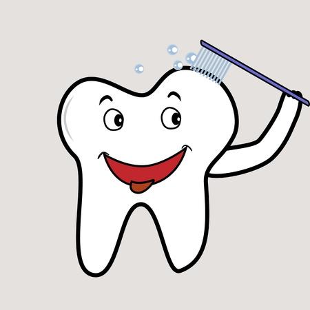 Dente molare spazzolatura stesso per una buona igiene dentale Archivio Fotografico - 12305245
