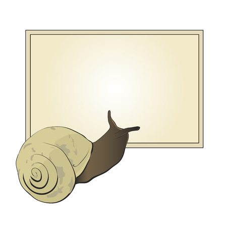 into: Cute snail looks into a text box
