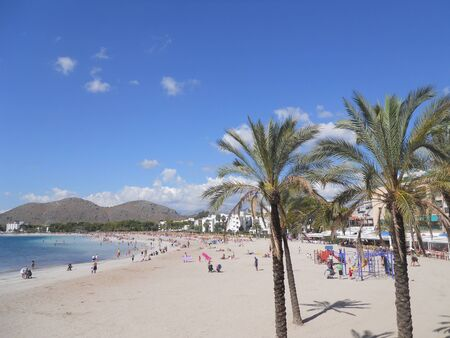 palma de mallorca  alcudia beach