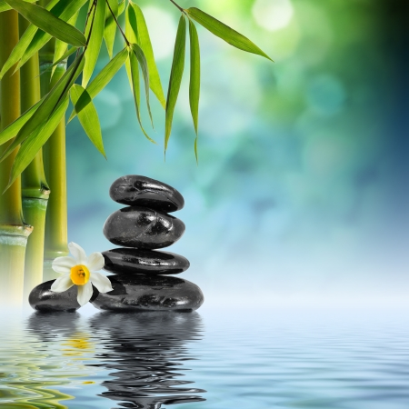 Stones and Bamboo on the water photo