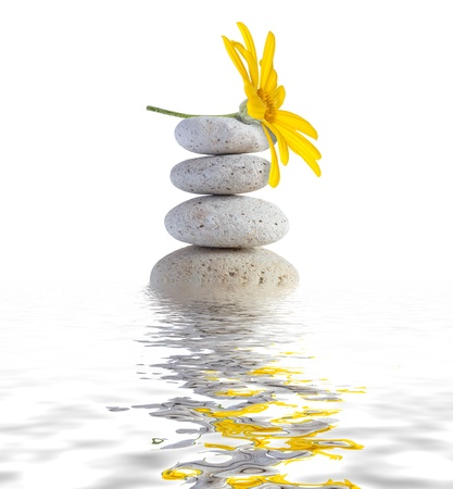 therapeutic: zen spa stones with flower