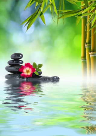 wellness background: Stones, rose and Bamboo on the water