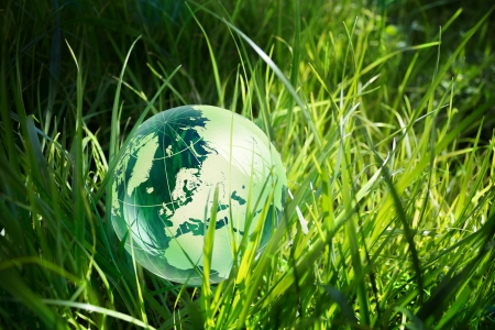 glass globe in the grass photo