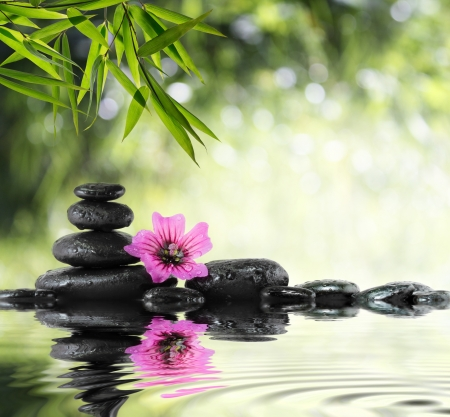 therapy group: black stones and hibiscus with bamboo on the water Stock Photo
