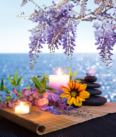 wisteria: massage stones with daisy and wisteria with the seabed - backlight Stock Photo