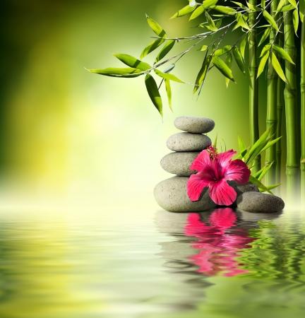 Stenen, rode hibiscus en bamboe op het water Stockfoto
