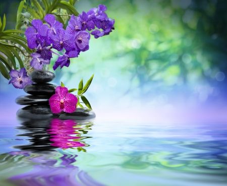 zen stones: violet orchids, black stones on the water