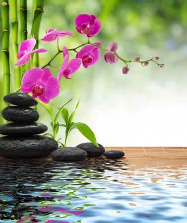 samenstelling bamboe-paarse orchidee-zwarte stenen
