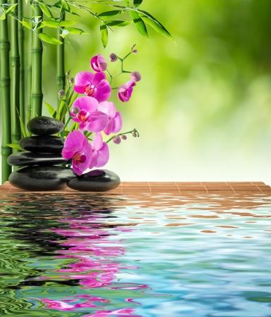 분홍색 난초 검은 돌과 물에 대나무