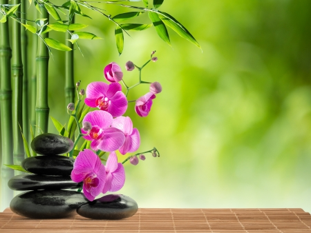 purple orchid, black stone and bamboo  photo