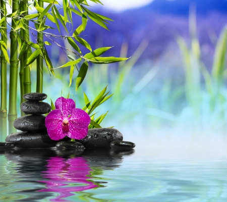 zen rocks: Purple Orchid, Stones and Bamboo on the water
