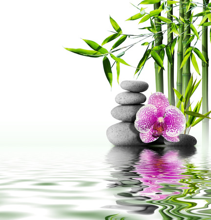bamboo therapy: purple orchid flower end bamboo on water  Stock Photo