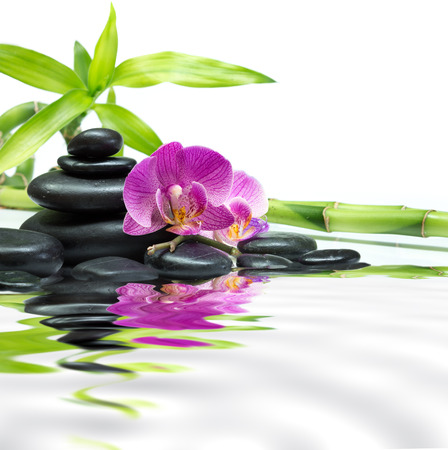 purple orchids with bamboo tower black stones on water  photo