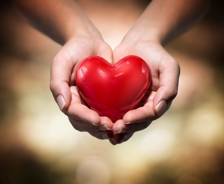 donations: heart in heart hands- warm background