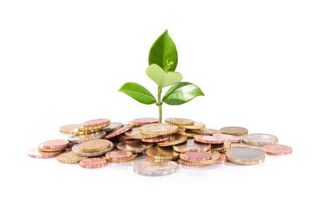 Geld-und Anlagenbau Standard-Bild - 23650310