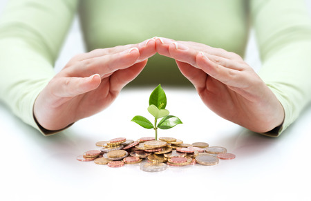 bank protection: protect new business start-up - with hands and plant  Stock Photo