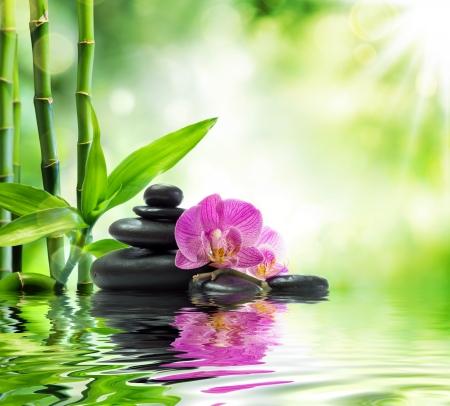 Achtergrond Spa - orchideeën zwarte stenen en bamboe op het water