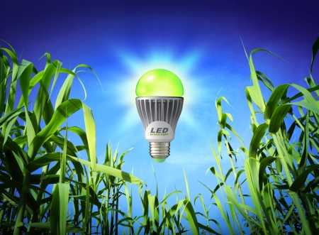 led lighting: growth ecology - led lamp - green lighting  Stock Photo