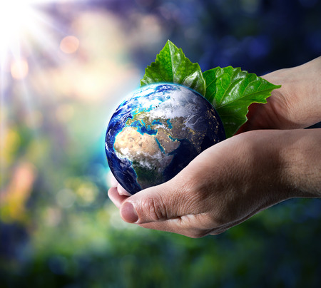 terrestrial: world in hand - environment concept