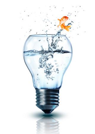 pez dorado: cambio de energía concepto - aislados Foto de archivo