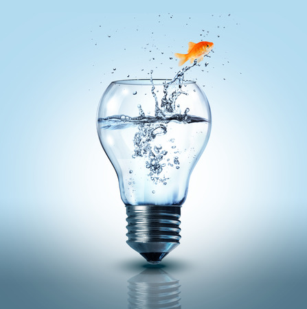 goldfish jumping out electric bulb  photo