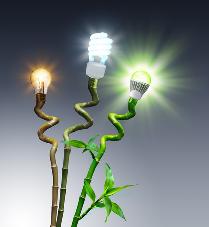 bulbs in comparison - Halogen, Fluorescent and LED - on bamboo  photo
