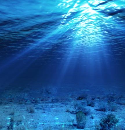 paisaje submarino y telón de fondo con algas