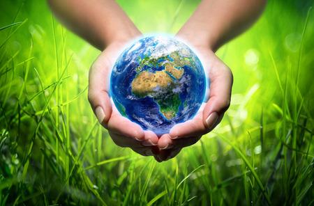 손에 지구 - 잔디 - 환경 개념 - 유럽