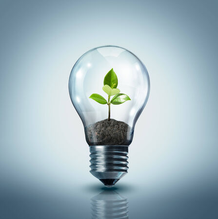 small lamp: ecological idea - plant in lamp  Stock Photo