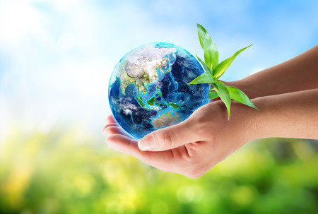 green world: orient in hands - environmental concept  Stock Photo