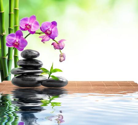 spa con bambú, orquídeas y agua