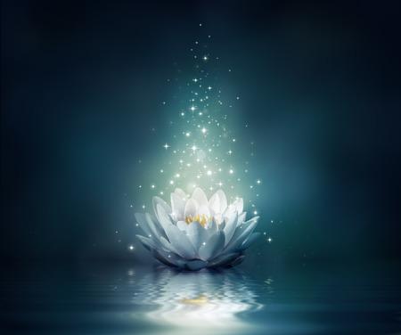 flor de loto: nenúfar en el agua - fondo de cuento de hadas